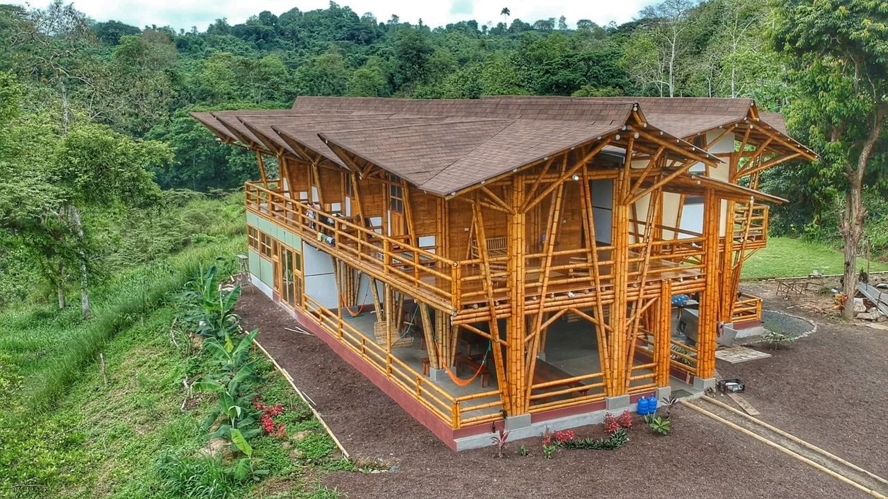 Bamboo Building In Ecuador Lloyd S Blog