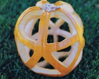 Icosahedral Pumpkin and Model
