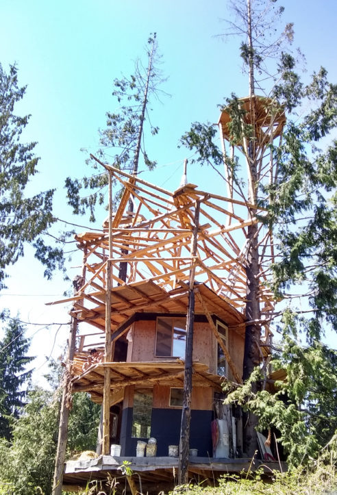 Construction Photos of SunRay's Treehouse